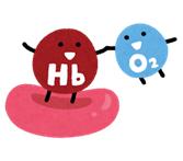 ヘモグロビン.png